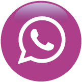 icon vector whatsapp